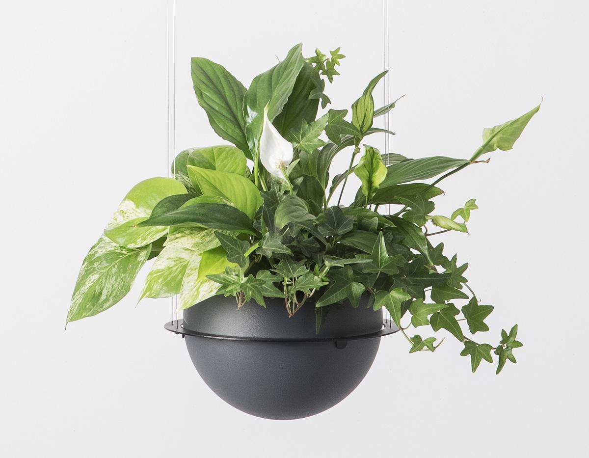 Circ Flower Pot Suspension Product 00