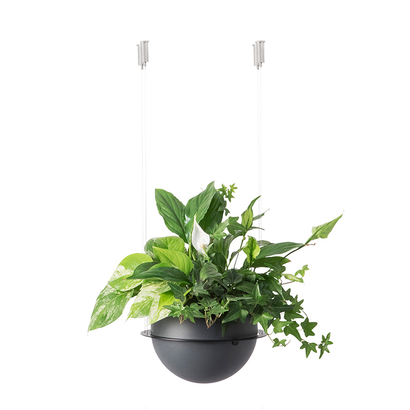 Circ Flower Pot Suspension Secondary